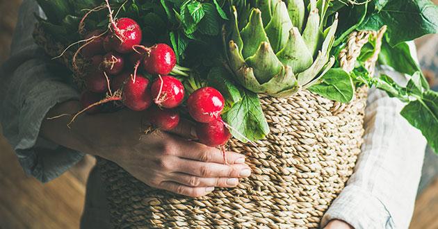 comprar orgânicos em botucatu